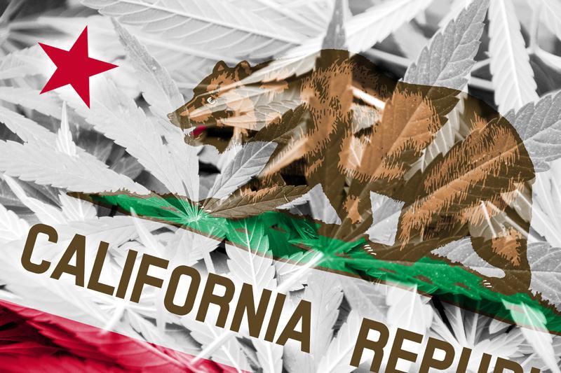 Examining California's Recreational Cannabis Supply Stream