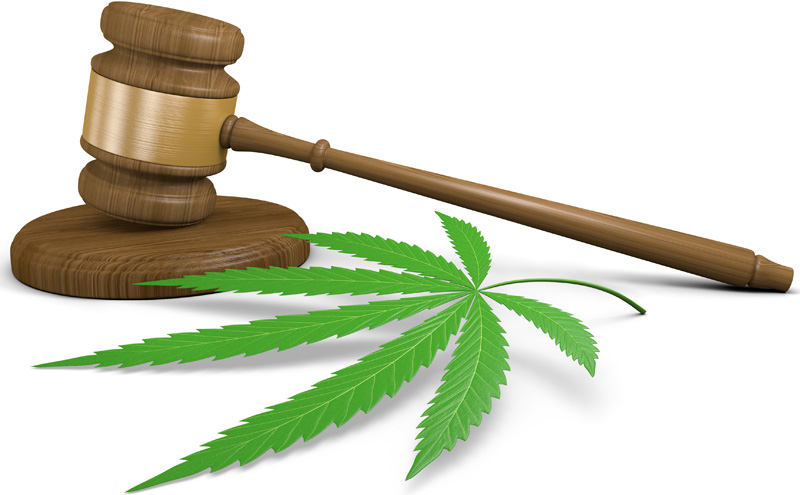 How Pot Businesses Can Fend Off RICO Cases
