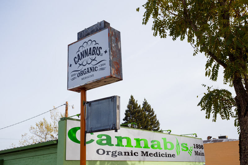 How to Avoid the Rising Tide of Cannabis Lawsuits